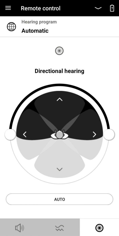 Microphone Pattern Adjustment